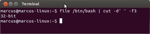 terminal-linux-32-64-bits